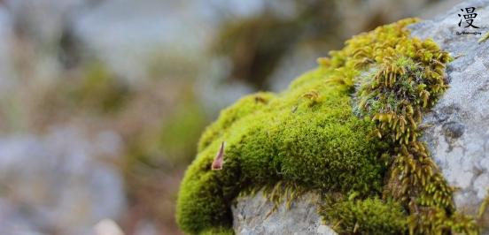 La piedra con su vestido verde