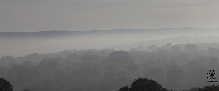 Neblinas de Ávila