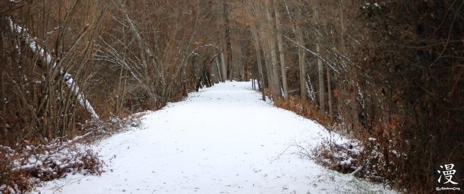Camino nevado, Rascafría