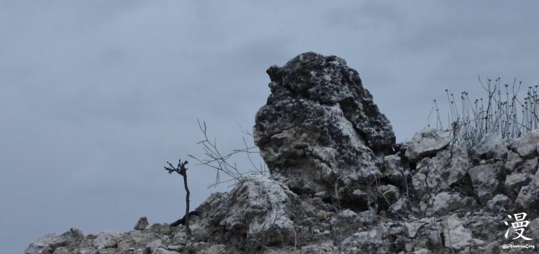 El pájaro de piedra