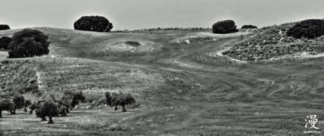 Campos de Chinchón